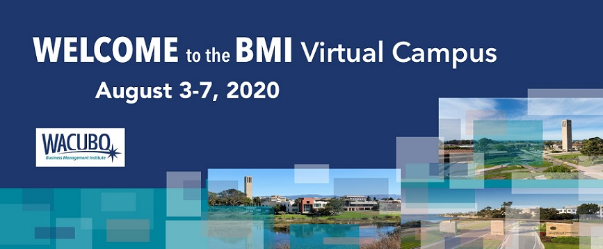 Banner for BMI 2020